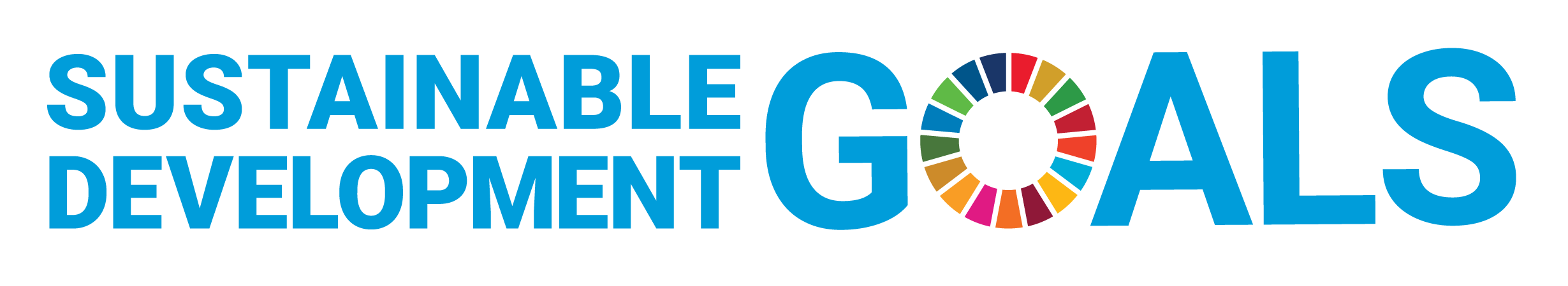E SDG Logo Without UN Emblem Horizontal Transparent WEB